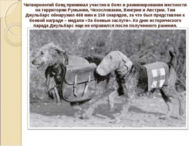 http://s6.uploads.ru/sQHxR.jpg