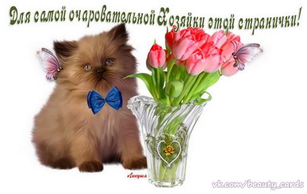 http://s6.uploads.ru/t/06Ja9.jpg