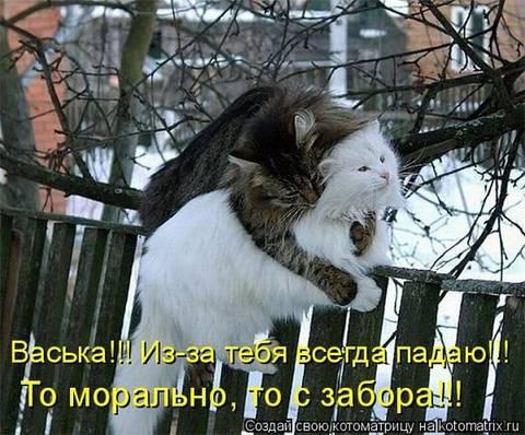 http://s6.uploads.ru/t/0scmV.jpg