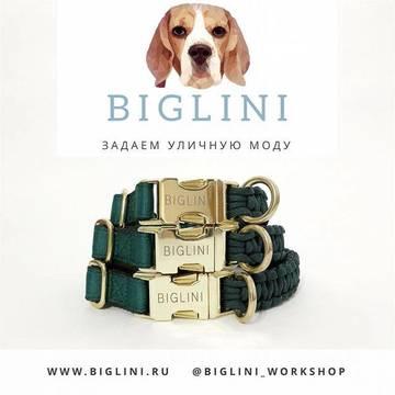 http://s6.uploads.ru/t/0uzxg.jpg