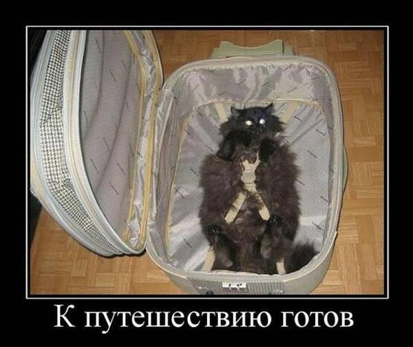 http://s6.uploads.ru/t/1Xl3u.jpg