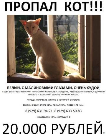 http://s6.uploads.ru/t/2J1Ru.jpg