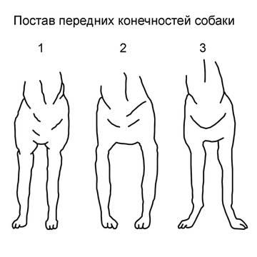 http://s6.uploads.ru/t/2T7qS.jpg