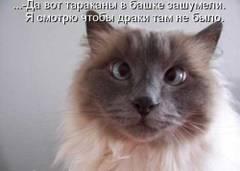 http://s6.uploads.ru/t/2fxlL.jpg