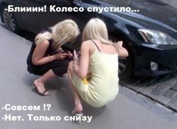 http://s6.uploads.ru/t/3C0lc.jpg