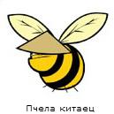 http://s6.uploads.ru/t/3G27j.jpg