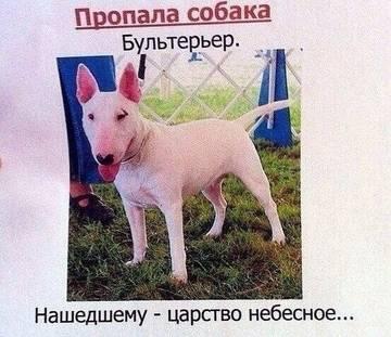 http://s6.uploads.ru/t/3ocrC.jpg
