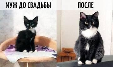http://s6.uploads.ru/t/3yh81.jpg