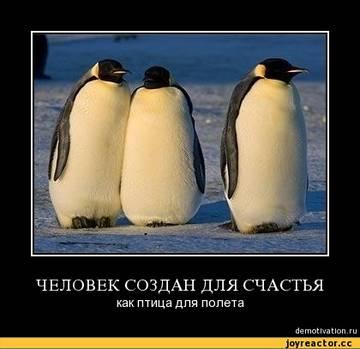http://s6.uploads.ru/t/50BrL.jpg