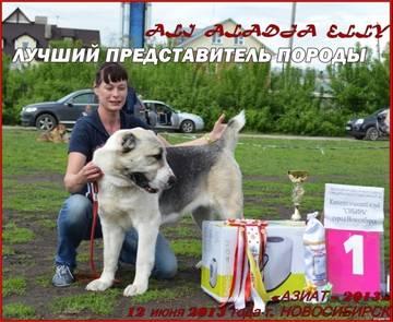 http://s6.uploads.ru/t/6O1Sg.jpg
