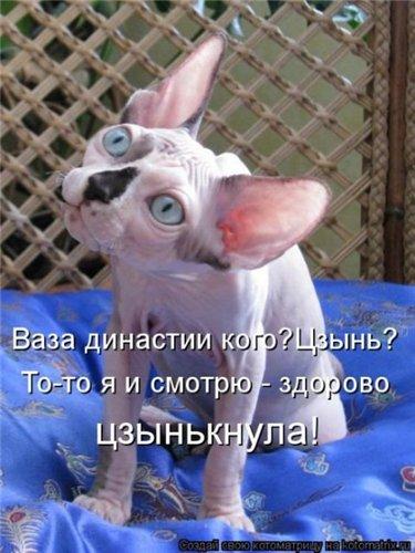 http://s6.uploads.ru/t/93xJt.jpg