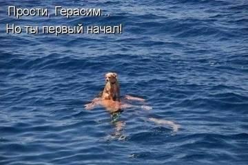 http://s6.uploads.ru/t/9mRqb.jpg
