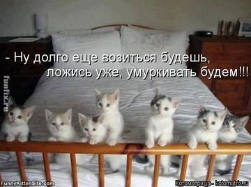 http://s6.uploads.ru/t/9s5cD.jpg
