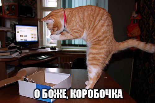 http://s6.uploads.ru/t/ABUX1.jpg