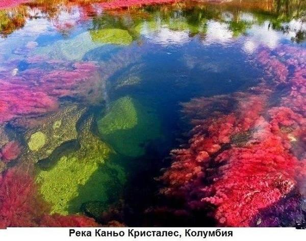 http://s6.uploads.ru/t/AMqEo.jpg