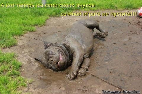 http://s6.uploads.ru/t/AagKU.jpg