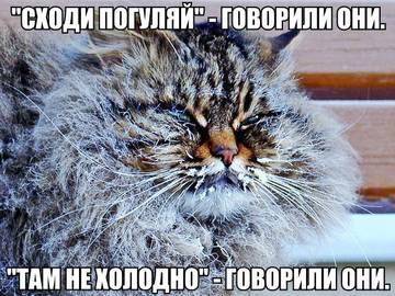 http://s6.uploads.ru/t/AsRWw.jpg