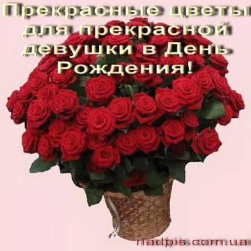 http://s6.uploads.ru/t/AvK1H.jpg