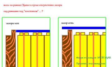 http://s6.uploads.ru/t/B9GqF.jpg