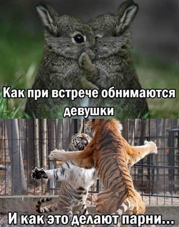 http://s6.uploads.ru/t/Bvcxq.jpg