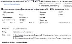 http://s6.uploads.ru/t/DCzTR.png