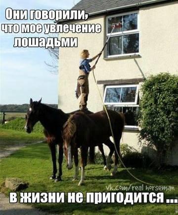 http://s6.uploads.ru/t/Dv4fZ.jpg