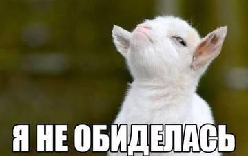 http://s6.uploads.ru/t/EGTVy.jpg