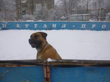 http://s6.uploads.ru/t/EYJd0.jpg