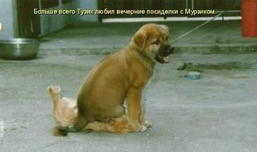 http://s6.uploads.ru/t/EfSM8.jpg