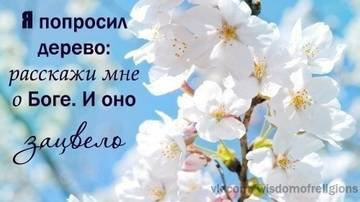 http://s6.uploads.ru/t/F9vZL.jpg