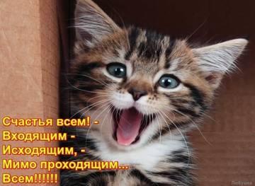 http://s6.uploads.ru/t/FrSCh.jpg