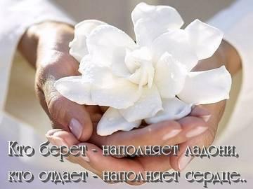 http://s6.uploads.ru/t/GM5i4.jpg