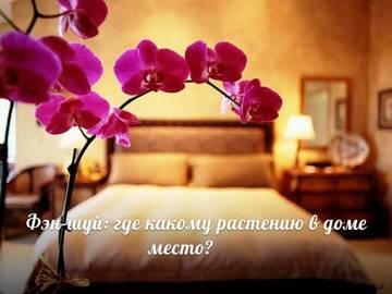 http://s6.uploads.ru/t/GMVbR.jpg