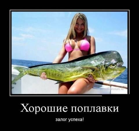http://s6.uploads.ru/t/GZCqR.jpg