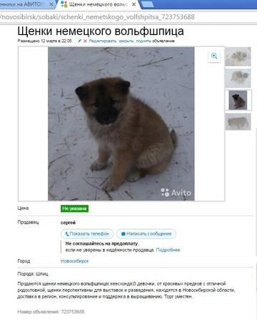 http://s6.uploads.ru/t/GZunh.jpg