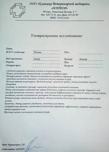 http://s6.uploads.ru/t/HTYwR.jpg