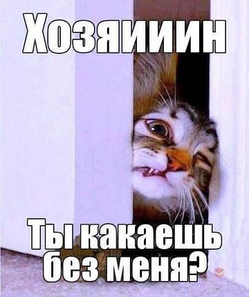 http://s6.uploads.ru/t/Hdek3.jpg
