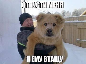 http://s6.uploads.ru/t/HiKTY.jpg