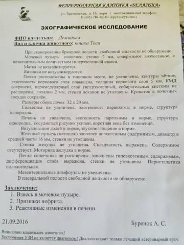 http://s6.uploads.ru/t/IQNkR.jpg