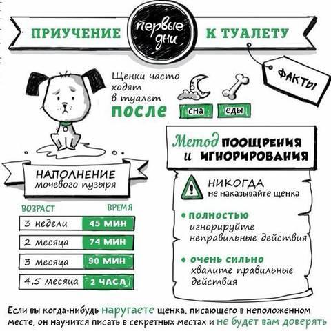 http://s6.uploads.ru/t/Idi7E.jpg