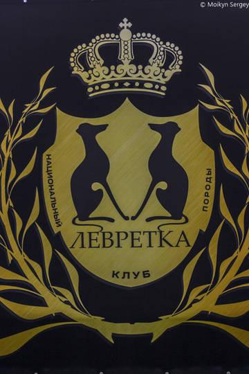 http://s6.uploads.ru/t/IgLoy.jpg