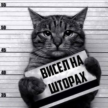 http://s6.uploads.ru/t/JDzHm.jpg