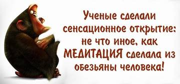 http://s6.uploads.ru/t/JdcCG.jpg