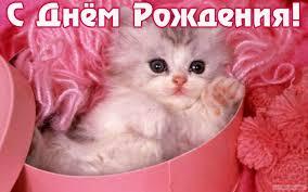 http://s6.uploads.ru/t/JvMC2.jpg