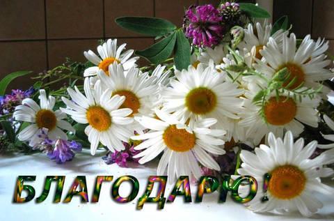 http://s6.uploads.ru/t/JwbOs.jpg