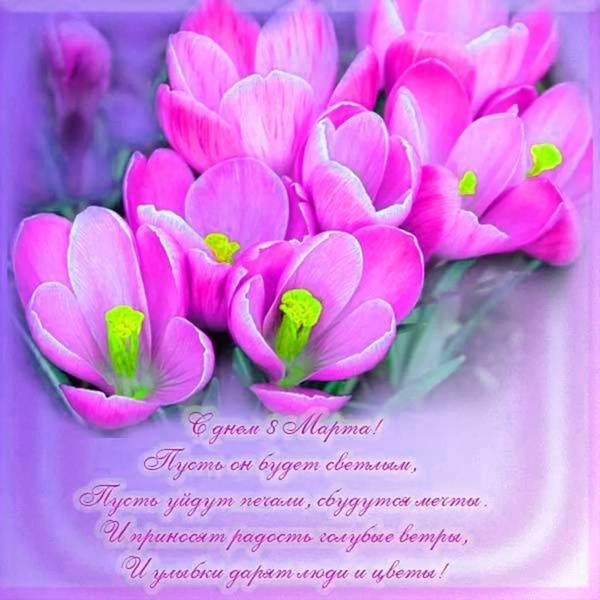 http://s6.uploads.ru/t/JwgoE.jpg
