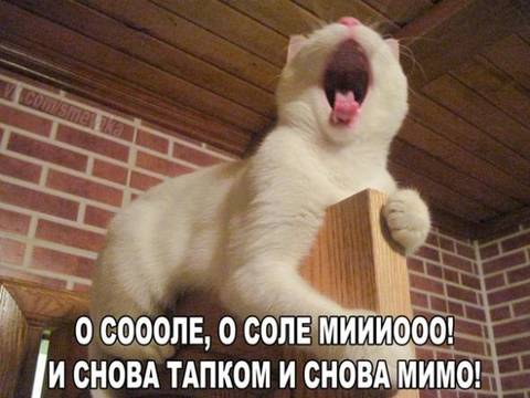 http://s6.uploads.ru/t/LK0TS.jpg