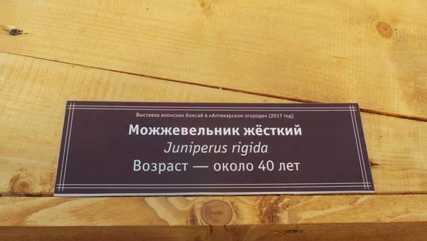 http://s6.uploads.ru/t/M0ZOu.jpg