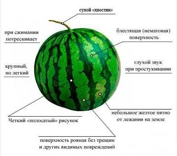 http://s6.uploads.ru/t/MbAwG.jpg