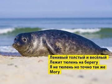 http://s6.uploads.ru/t/Nphma.jpg